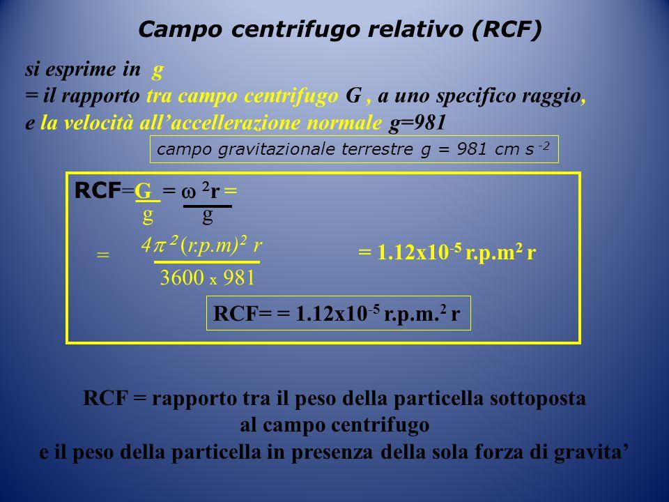 Campo centrifugo relativo (RCF)