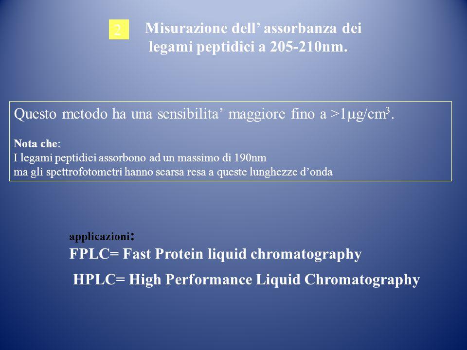 Misurazione dell' assorbanza dei legami peptidici a 205-210nm. 2