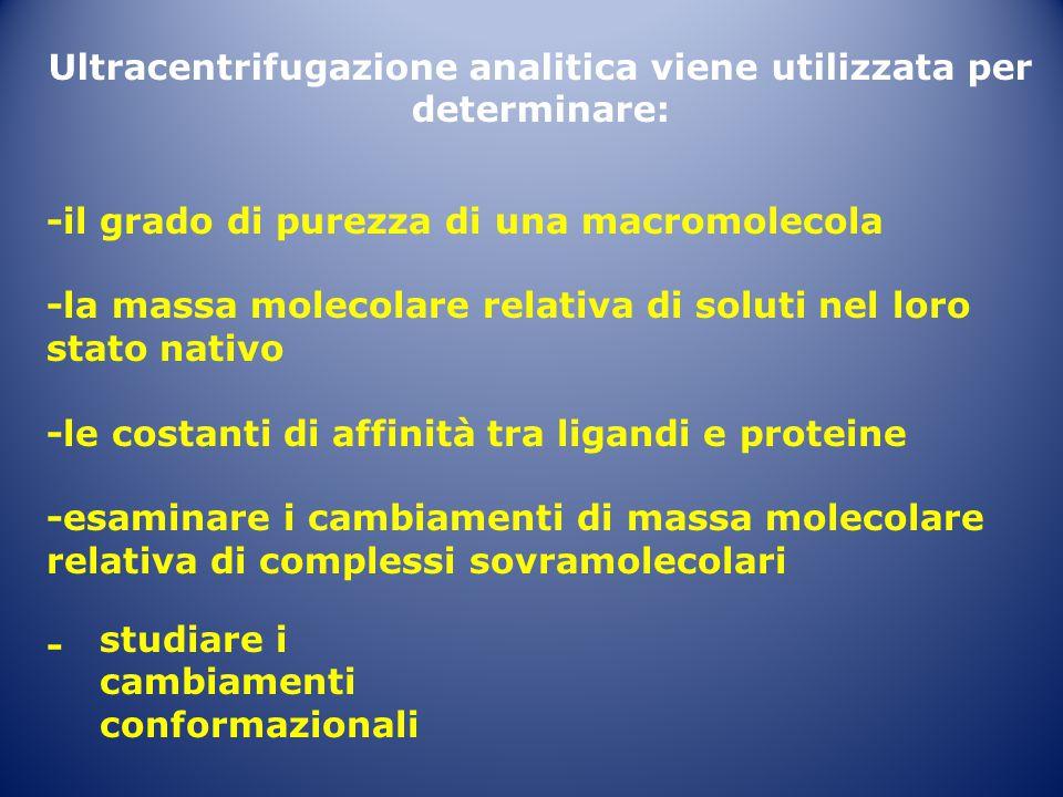 Ultracentrifugazione analitica viene utilizzata per