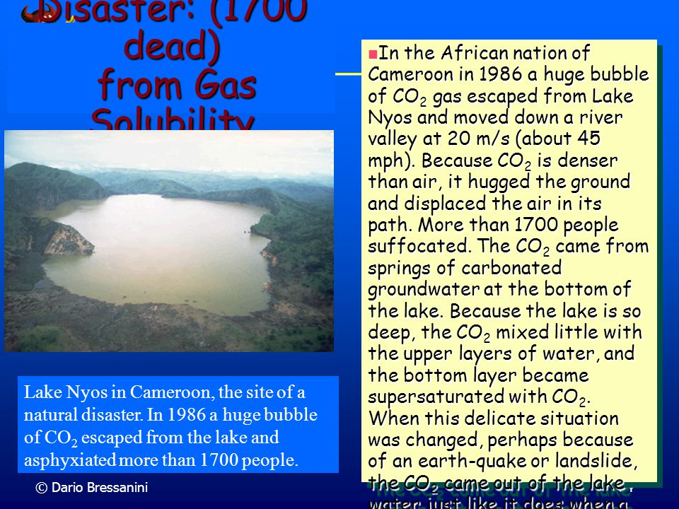 Disaster: (1700 dead) from Gas Solubility