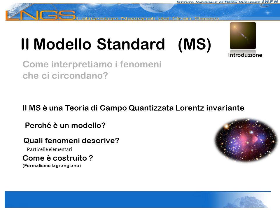 Il Modello Standard (MS)