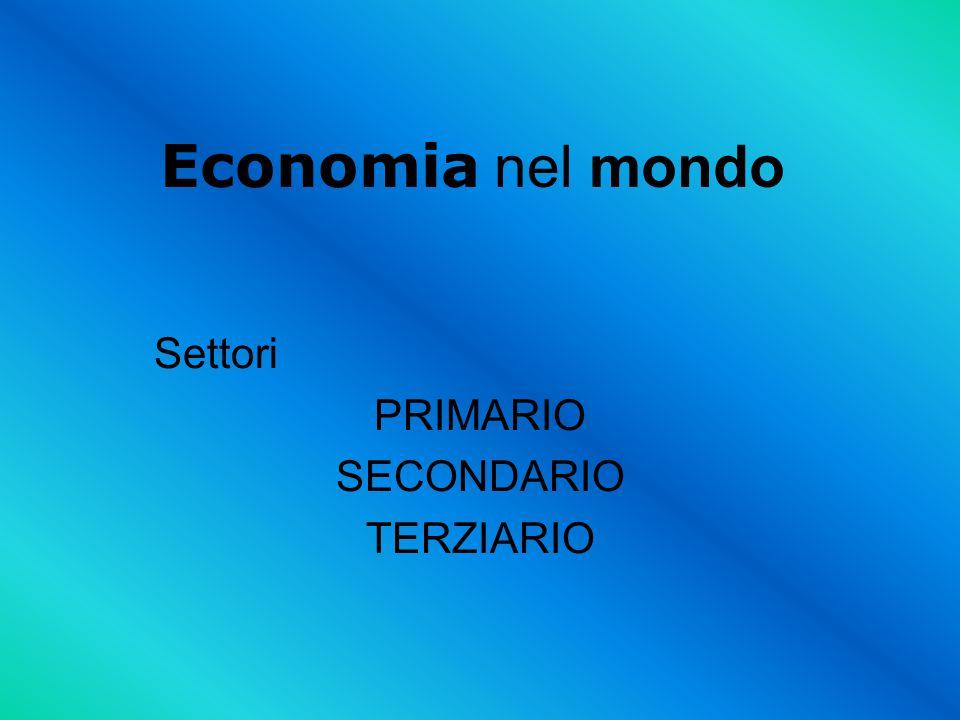 Settori PRIMARIO SECONDARIO TERZIARIO