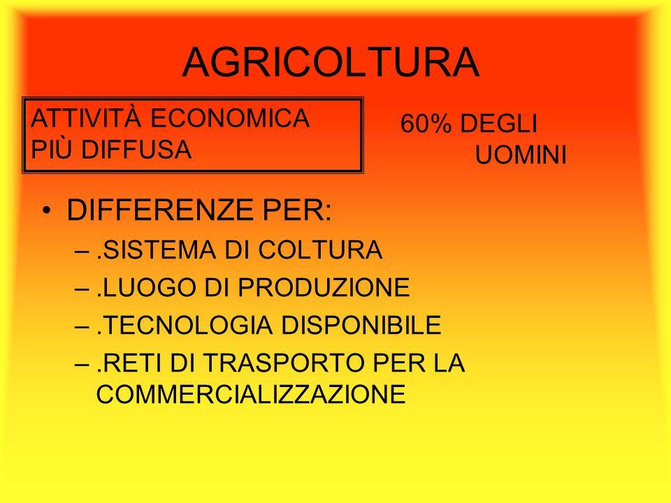 AGRICOLTURA DIFFERENZE PER: ATTIVITÀ ECONOMICA PIÙ DIFFUSA