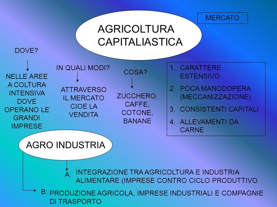 AGRICOLTURA CAPITALIASTICA