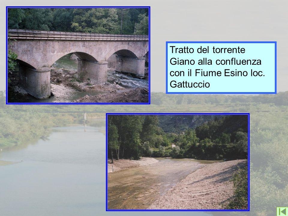 Tratto del torrente Giano alla confluenza con il Fiume Esino loc