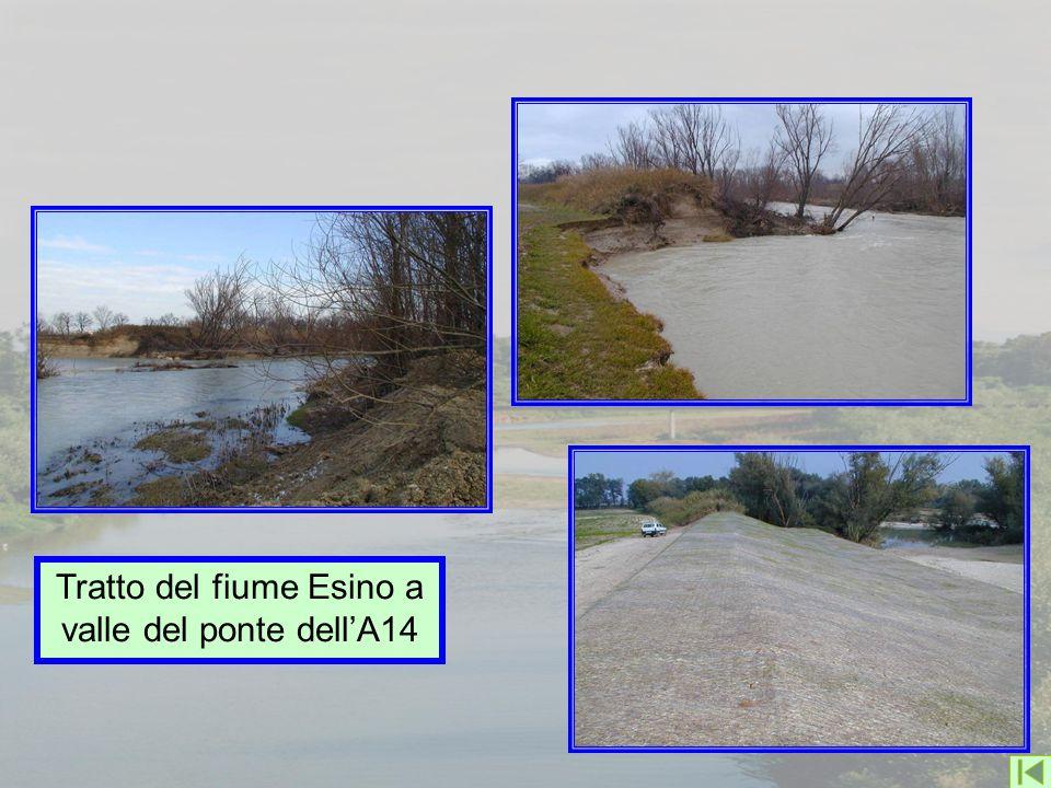 Tratto del fiume Esino a valle del ponte dell'A14