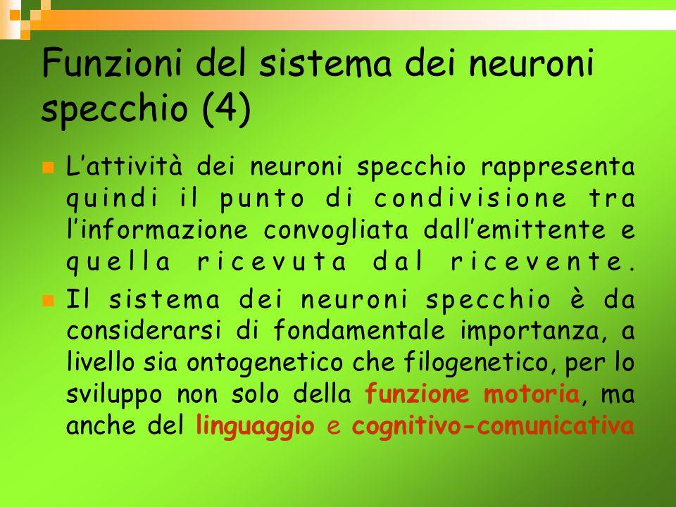 Funzioni del sistema dei neuroni specchio (4)