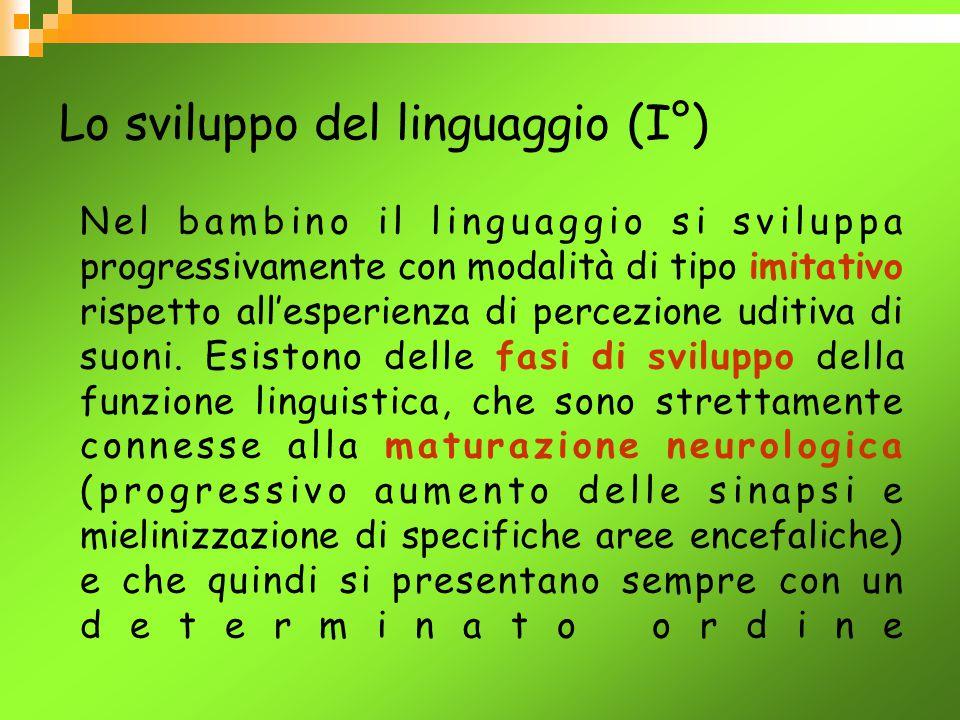 Lo sviluppo del linguaggio (I°)