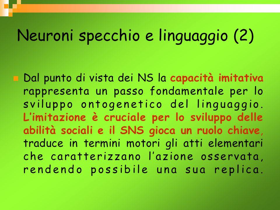 Neuroni specchio e linguaggio (2)
