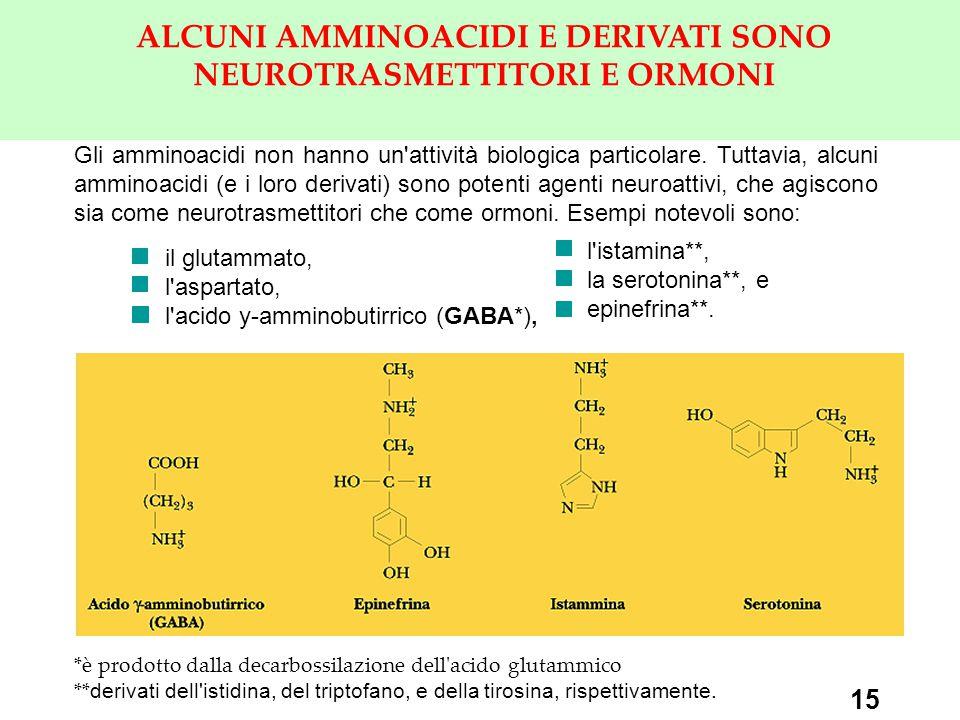 ALCUNI AMMINOACIDI E DERIVATI SONO NEUROTRASMETTITORI E ORMONI