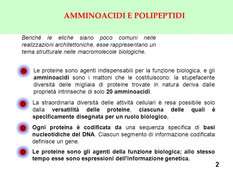 AMMINOACIDI E POLIPEPTIDI