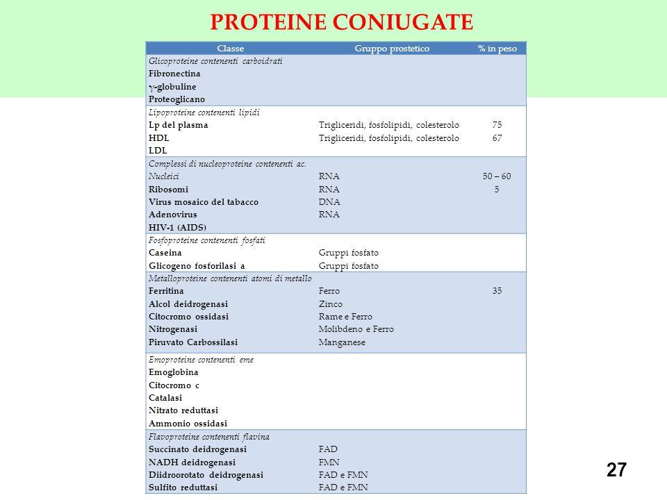 PROTEINE CONIUGATE FAD di nucleotide flavin adenina