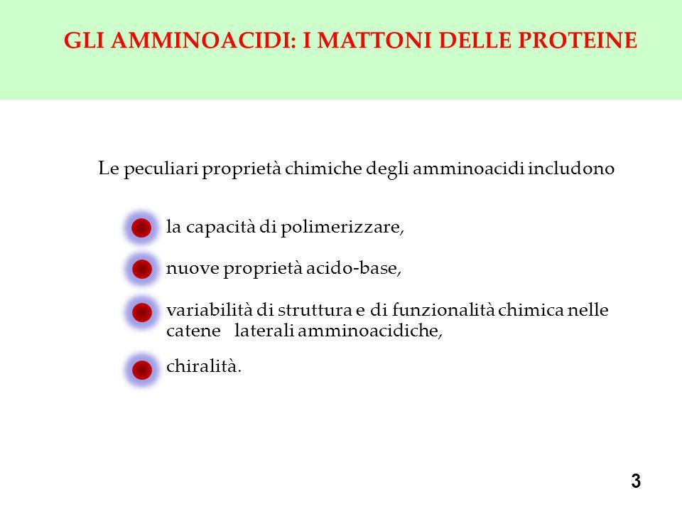 GLI AMMINOACIDI: I MATTONI DELLE PROTEINE