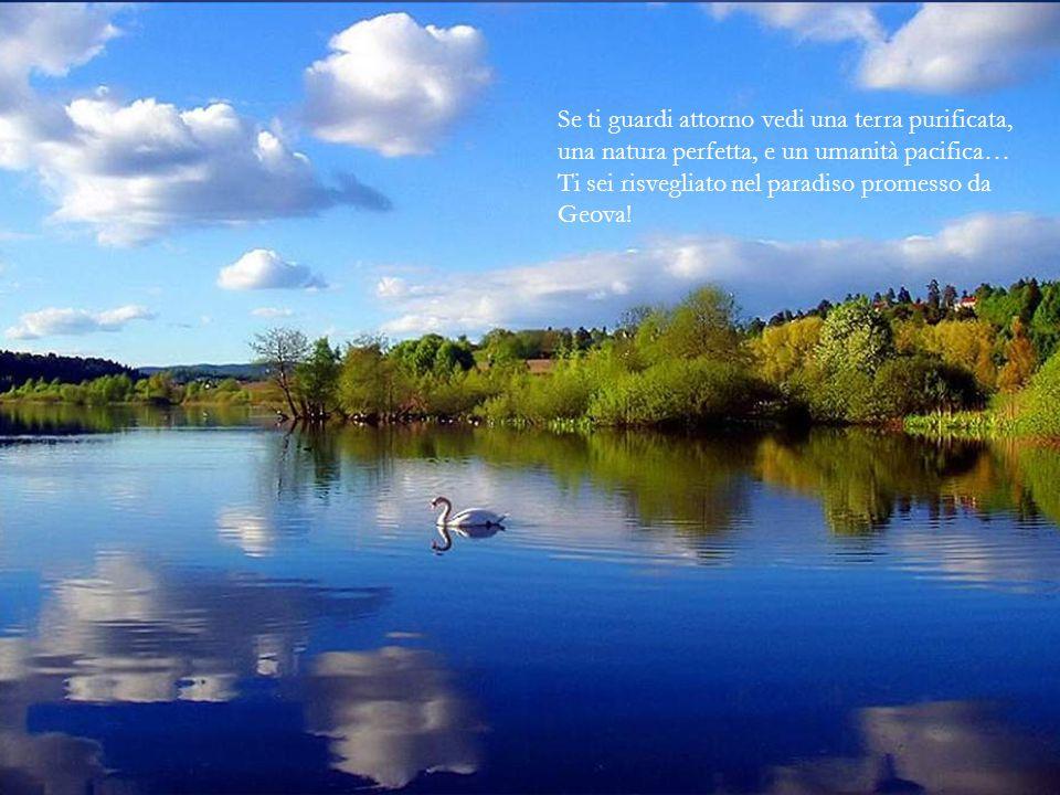 Se ti guardi attorno vedi una terra purificata, una natura perfetta, e un umanità pacifica… Ti sei risvegliato nel paradiso promesso da Geova!
