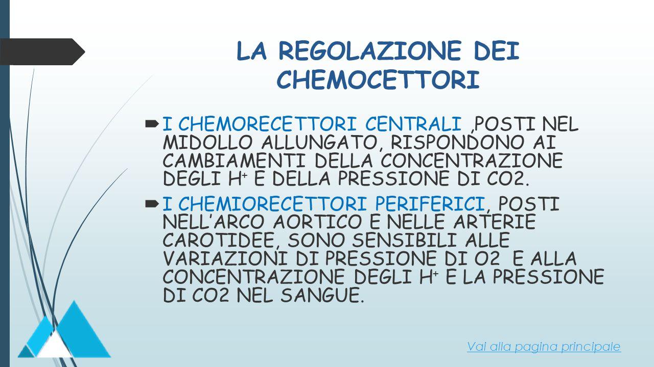 LA REGOLAZIONE DEI CHEMOCETTORI