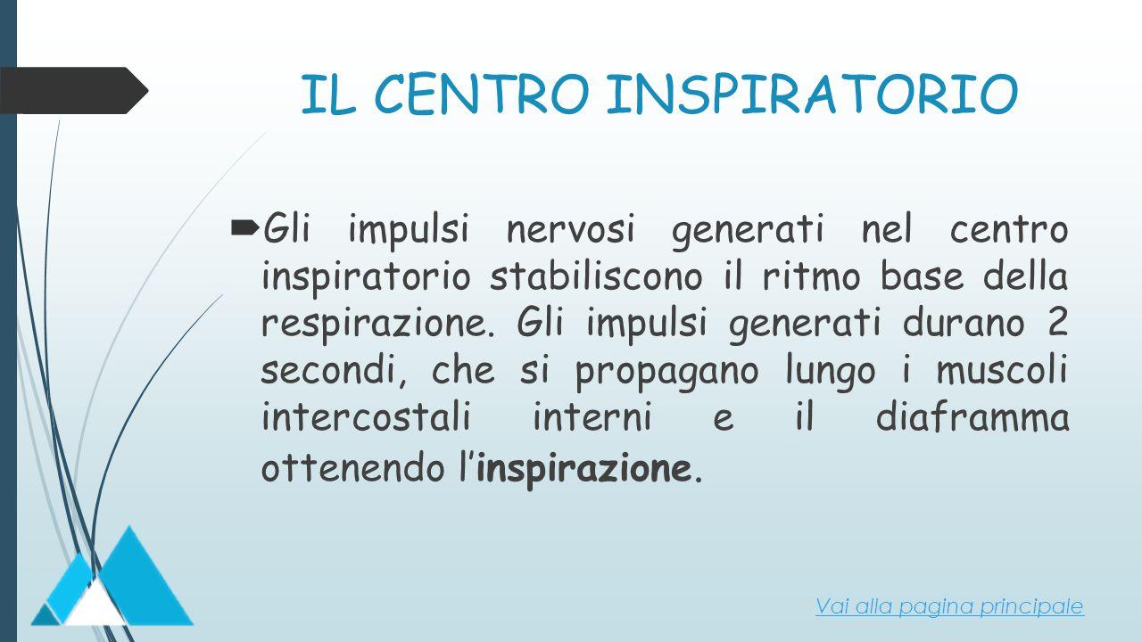 IL CENTRO INSPIRATORIO