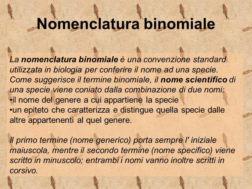 Nomenclatura binomiale