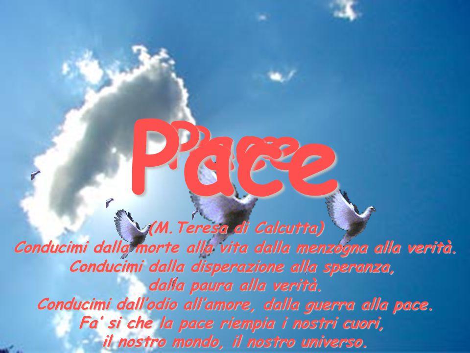 Pace Pace Pace (M.Teresa di Calcutta)