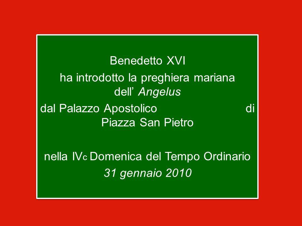 Benedetto XVI ha introdotto la preghiera mariana dell' Angelus dal Palazzo Apostolico di Piazza San Pietro nella IVc Domenica del Tempo Ordinario 31 gennaio 2010