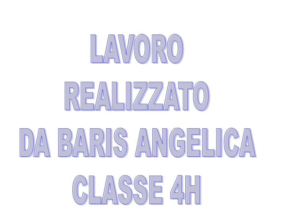 LAVORO REALIZZATO DA BARIS ANGELICA CLASSE 4H