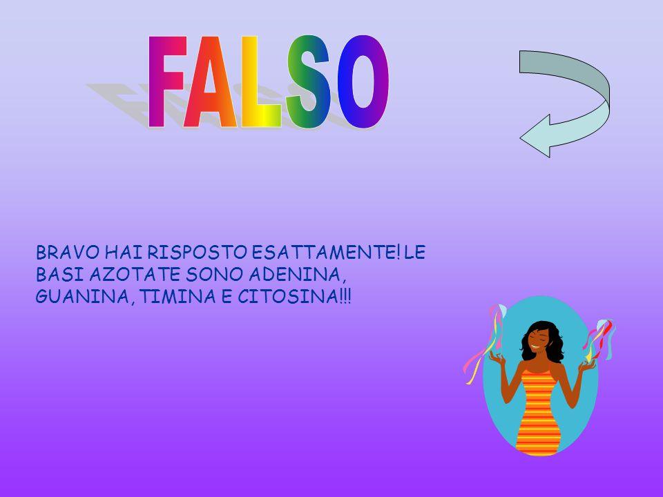 FALSO BRAVO HAI RISPOSTO ESATTAMENTE! LE BASI AZOTATE SONO ADENINA, GUANINA, TIMINA E CITOSINA!!!