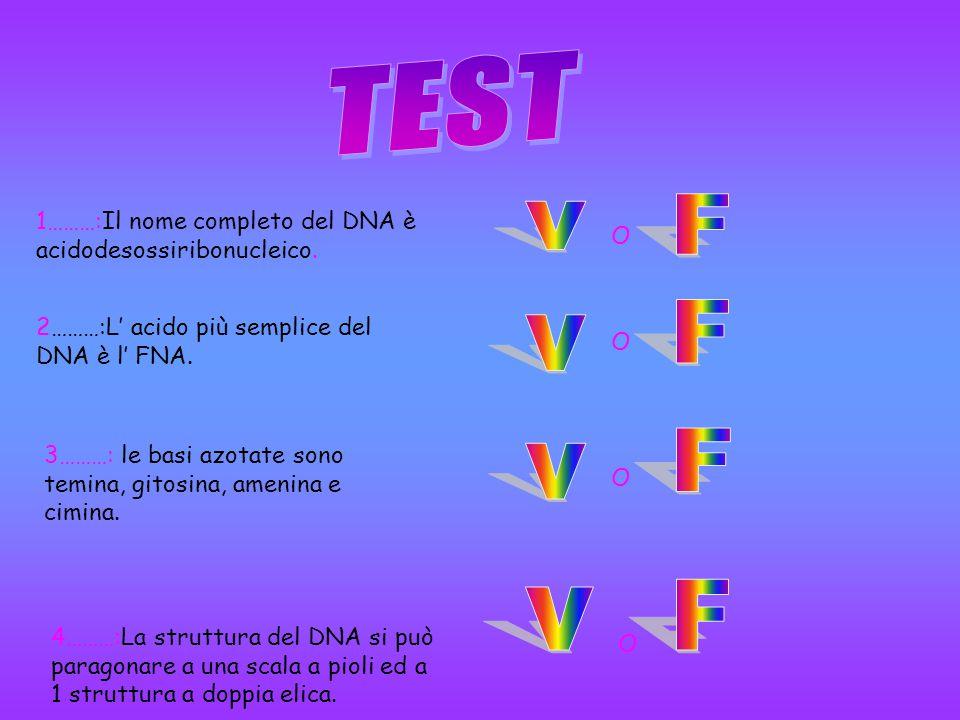 TEST F 1………:Il nome completo del DNA è acidodesossiribonucleico. v O F