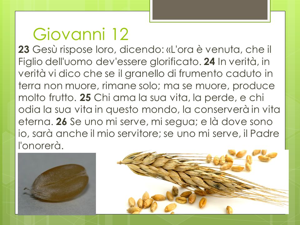 Giovanni 12