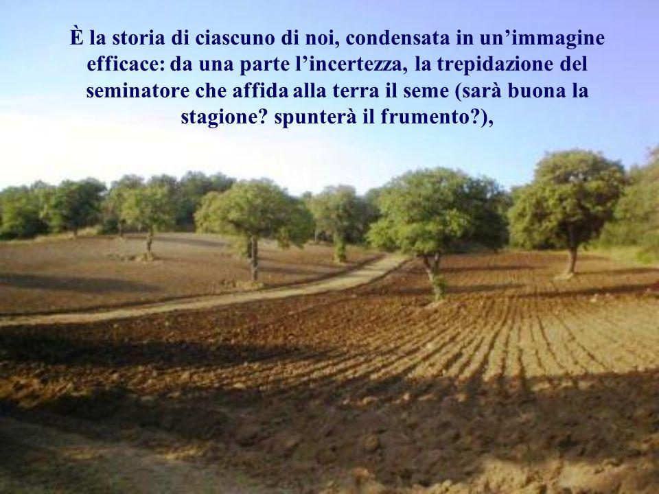 È la storia di ciascuno di noi, condensata in un'immagine efficace: da una parte l'incertezza, la trepidazione del seminatore che affida alla terra il seme (sarà buona la stagione.