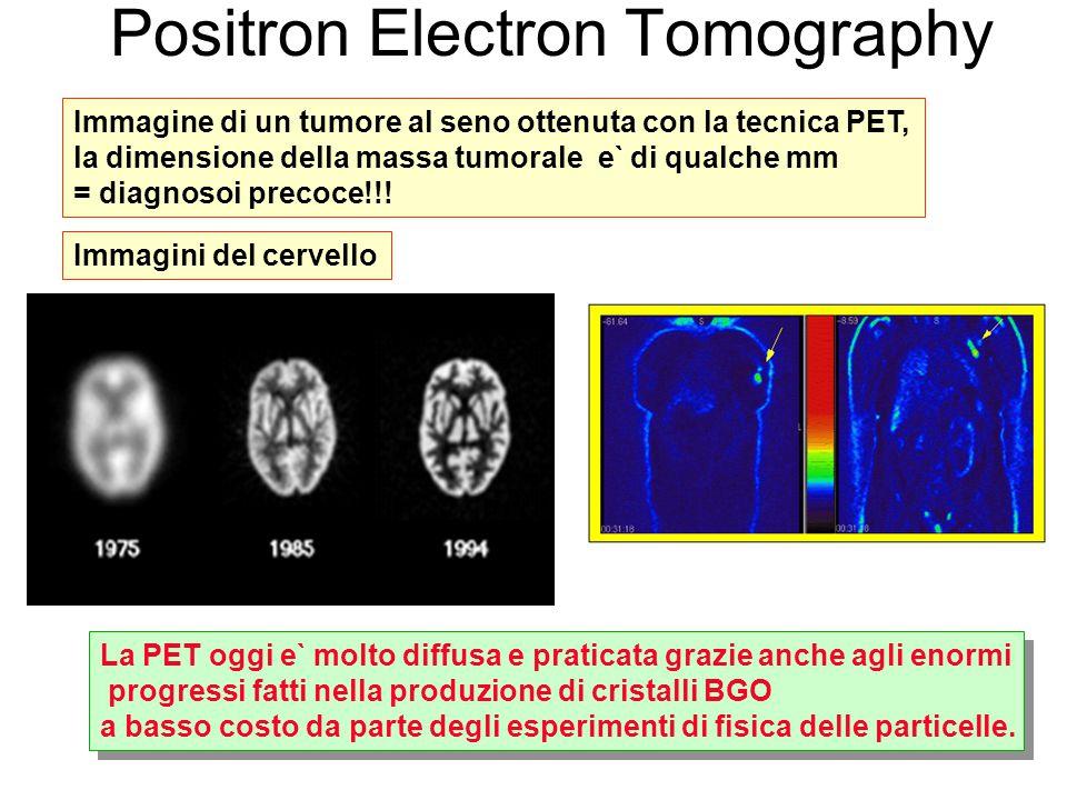 Positron Electron Tomography