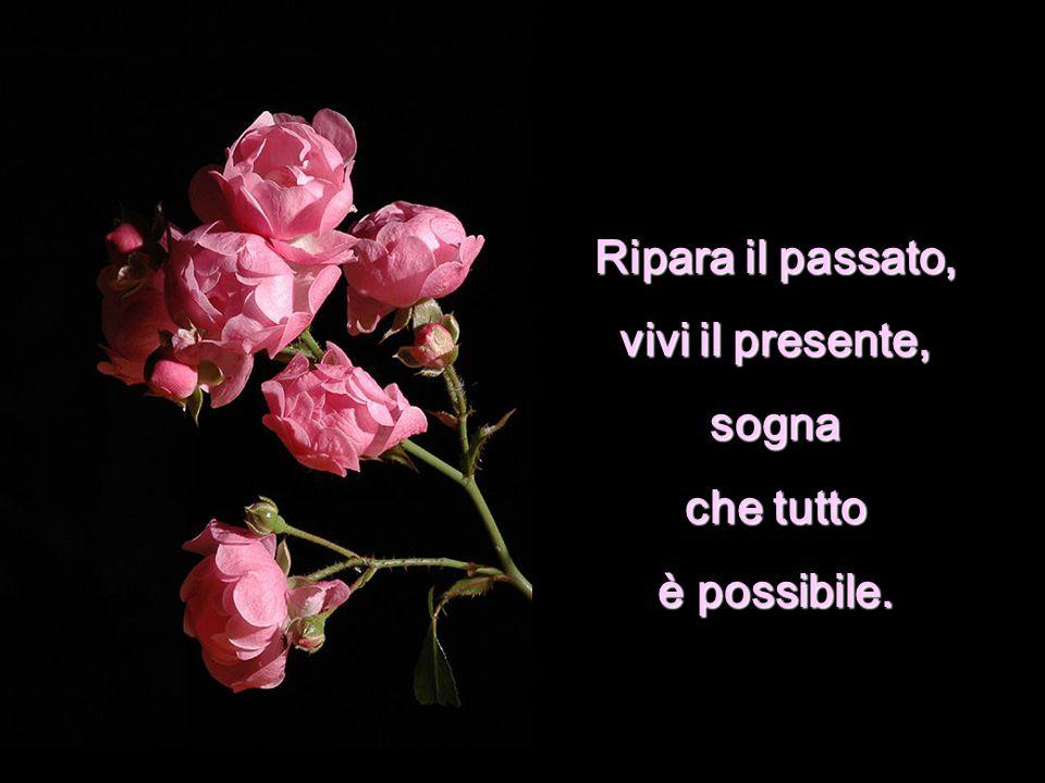 Ripara il passato, vivi il presente, sogna che tutto è possibile.