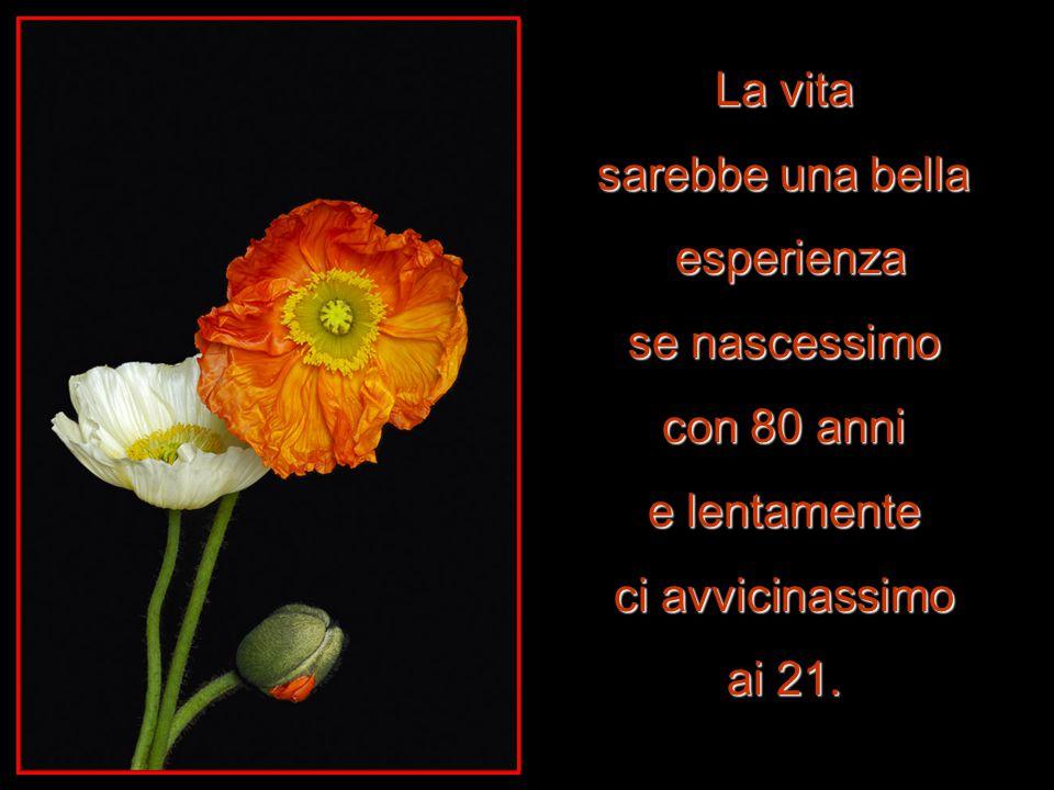 La vita sarebbe una bella esperienza se nascessimo con 80 anni e lentamente ci avvicinassimo ai 21.
