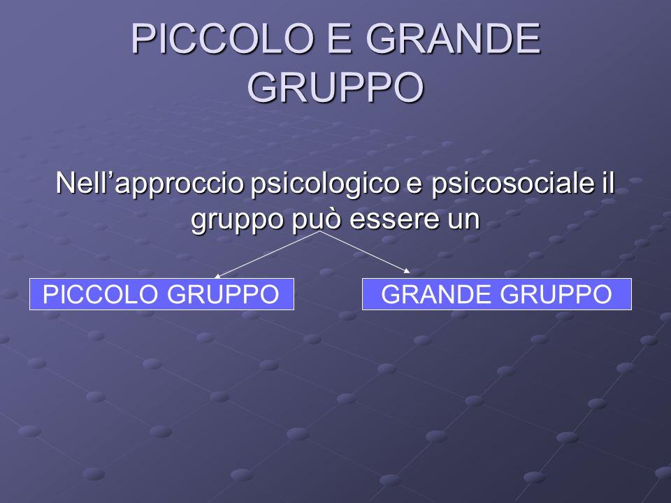 PICCOLO E GRANDE GRUPPO