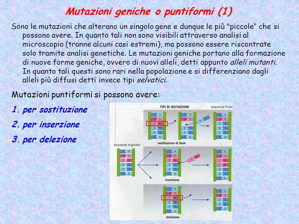 Mutazioni geniche o puntiformi (1)