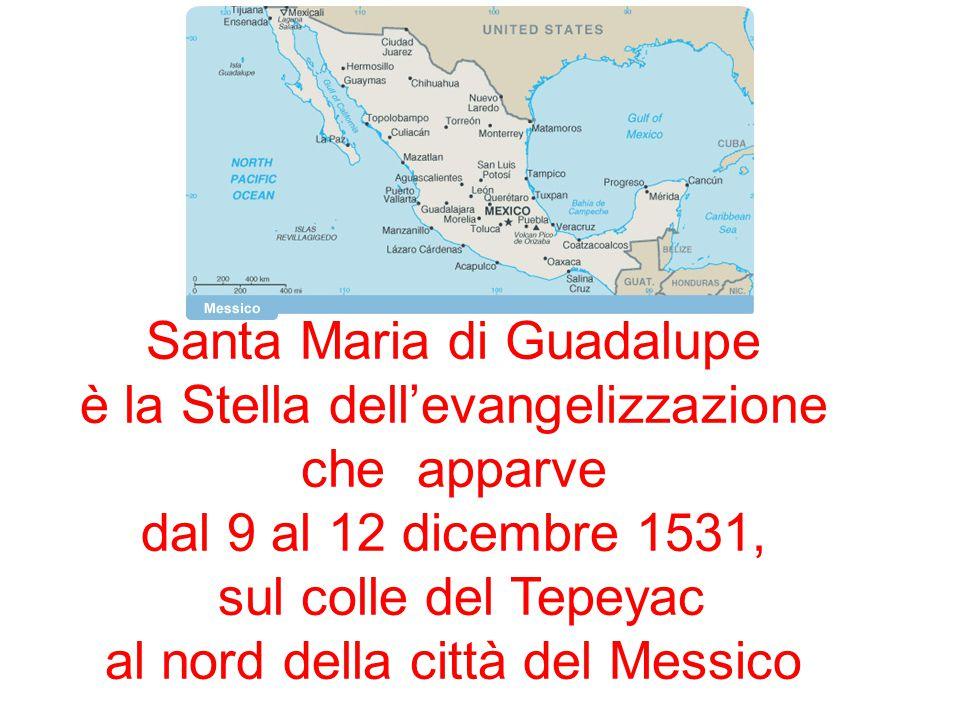 Santa Maria di Guadalupe è la Stella dell'evangelizzazione che apparve