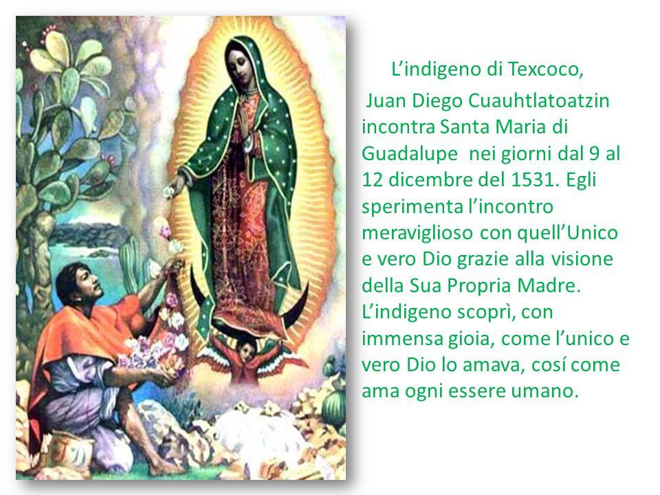 L'indigeno di Texcoco, Juan Diego Cuauhtlatoatzin incontra Santa Maria di Guadalupe nei giorni dal 9 al 12 dicembre del 1531.