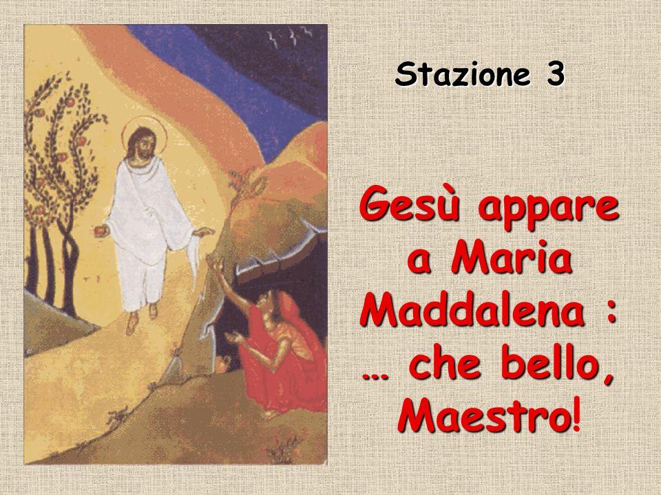 Gesù appare a Maria Maddalena : … che bello, Maestro!