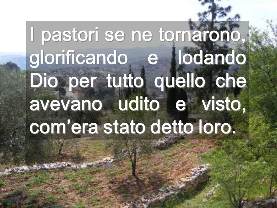 I pastori se ne tornarono, glorificando e lodando Dio per tutto quello che avevano udito e visto, com'era stato detto loro.
