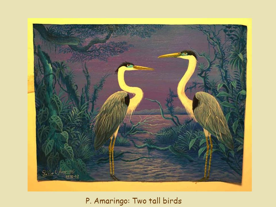 P. Amaringo: Two tall birds