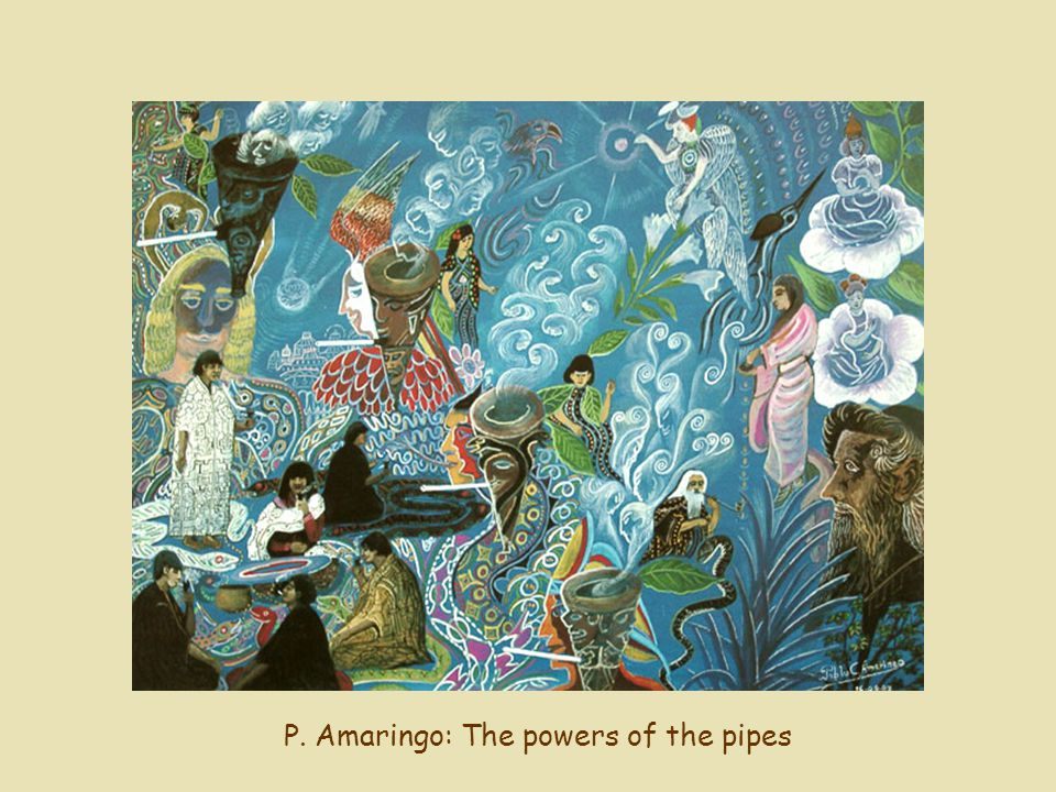 P. Amaringo: The powers of the pipes