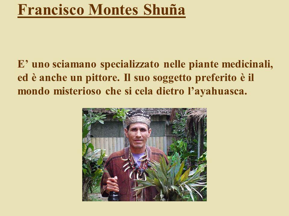 Francisco Montes Shuña E' uno sciamano specializzato nelle piante medicinali, ed è anche un pittore.