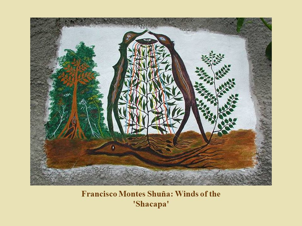 Francisco Montes Shuña: Winds of the Shacapa