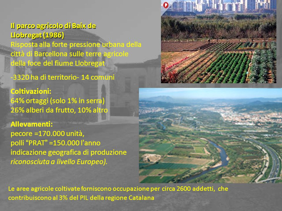 Il parco agricolo di Baix de Llobregat (1986)