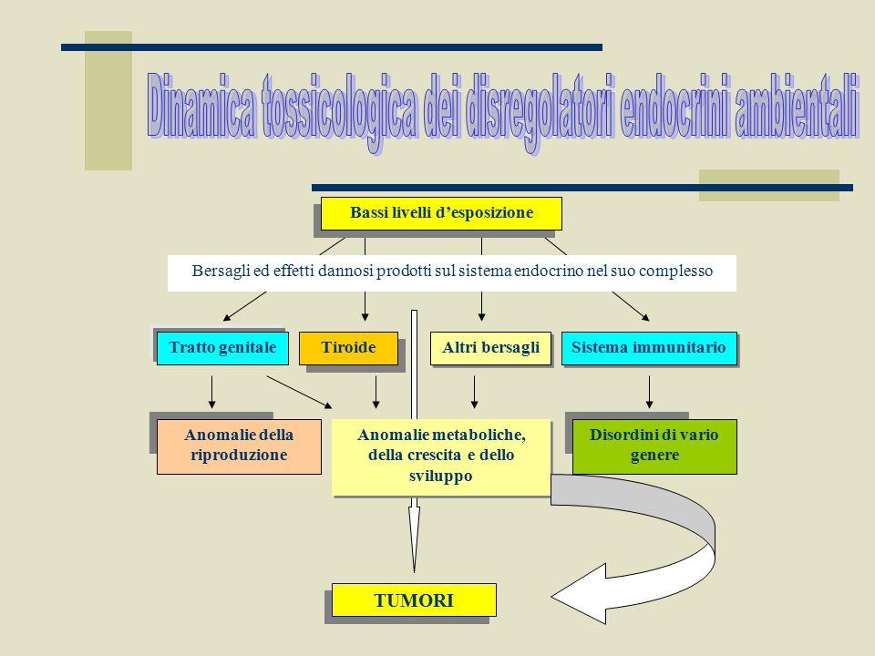 Dinamica tossicologica dei disregolatori endocrini ambientali