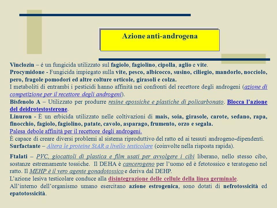 Azione anti-androgena