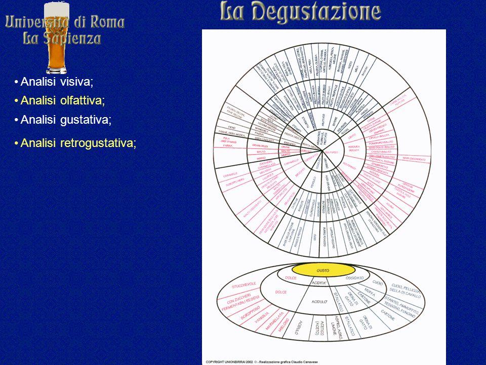 Analisi visiva; Analisi olfattiva; Analisi gustativa; Analisi retrogustativa;