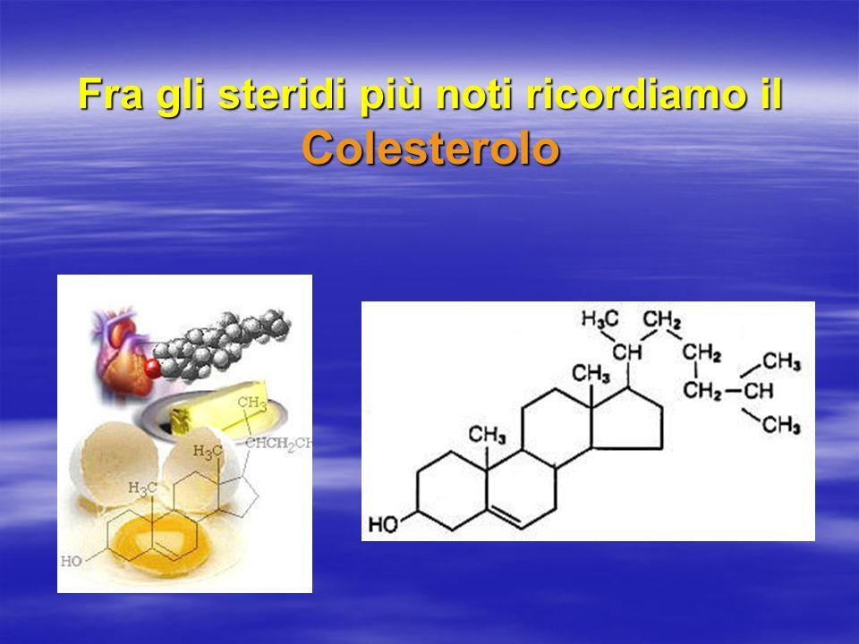 Fra gli steridi più noti ricordiamo il Colesterolo