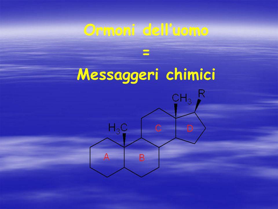 Ormoni dell'uomo = Messaggeri chimici