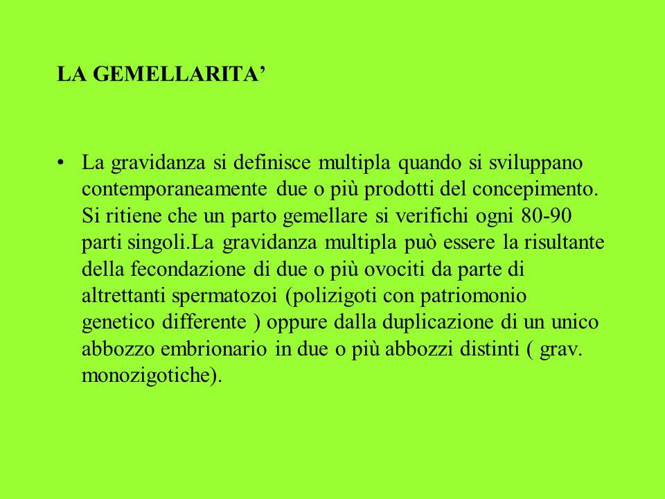 LA GEMELLARITA'
