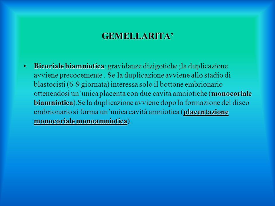 GEMELLARITA'