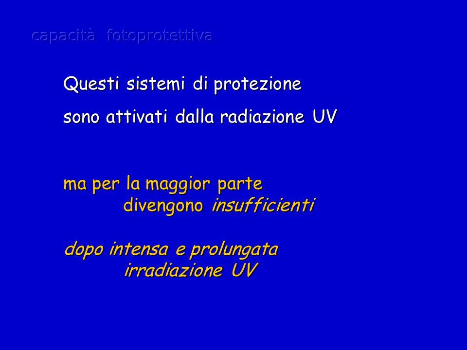 Questi sistemi di protezione sono attivati dalla radiazione UV